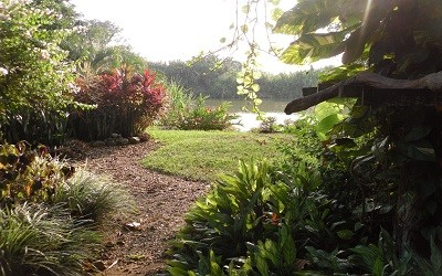 Walk to Rio Baru from Jazzy's River House Vacation Cottage in Dominical Costa Rica