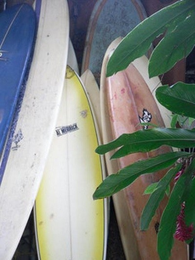 Dominical Surf Board Rentals
